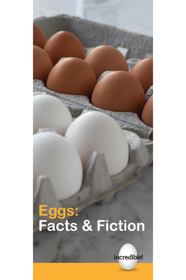 Eggs: Fact or Fiction